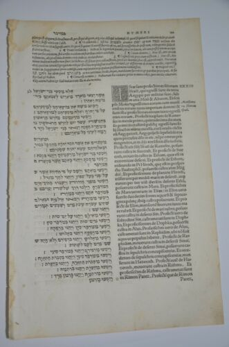1546 Bible Basel leaf Large  Amazing rare book Judaica Hebrew Latin antique NICE