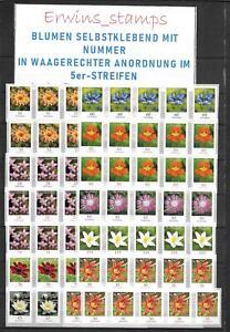 3516 fiori da 10000er-box orizzontale disposizione autoadesivo 5er-strisce