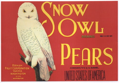 ***AN ORIGINAL LABEL*** SNOW OWL Vintage Perham Pear Crate Label Bird red
