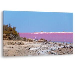 Pink-Lake-Beach-Salt-Crystals-Australia-Canvas-Wall-Art-Picture-Print-A0-A1-A2
