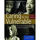 Caring for the Vulnerable by Mary De Chesnay, Barbara A. Anderson (Hardback, 2011)