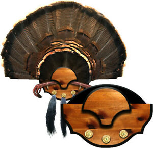 NEW-Mountain-Mike-039-s-Reproductions-Beard-Master-Turkey-Mounting-Kit-MMRBM