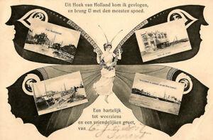HOEK-Gruesse-aus-Schmetterlingskarte-1906