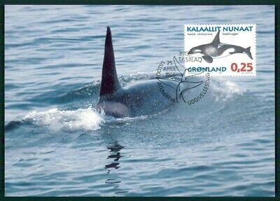 Gut Ausgebildete GrÖnland Mk 1996 Fauna Wal Wale Wahle Whales Baleine Maximumkarte Mc Cm En72 Warm Und Winddicht