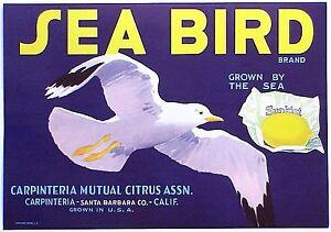 *Original* MARINER Ocean Navigator Santa Barbara Ship Lemon Label NOT A COPY!