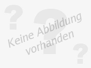 FTE Reparatursatz, Radbremszylinder RK38025K