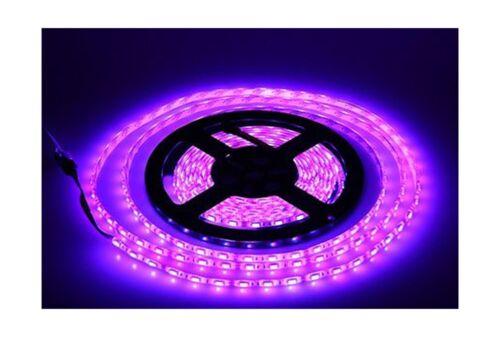 Purple 12V LED Strip Lights Waterproof 5M 300LED Led light strip