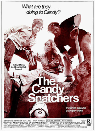 1973 Movie Poster The Candy Snatchers