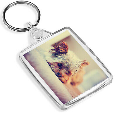 IP02 Cute Jack Russell Puppy Keyring Dog Pup Animal Lover Cool Gift #8286