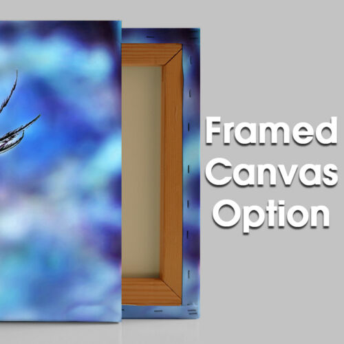 AB009 Blue Eye Feather Modern Abstract Canvas Wall Art Large Picture Prints