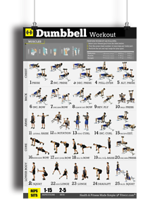 dumbbell workout poster strength training personal trainer