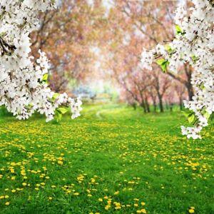 floral tree grassland photography backgrounds 6x6ft vinyl photo