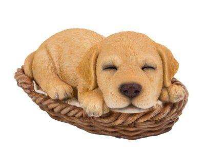 AD-GR3K Golden Retriever Puppies Photo Keyring Animal Gift