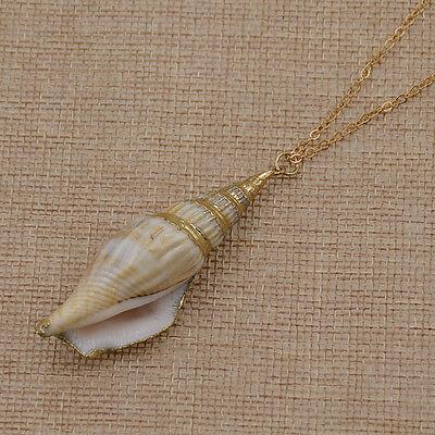 Sea Shell Pendant  Natural Seashell  Beach Jewelry Boho Shell SUPPLY {N7-1557#01736}