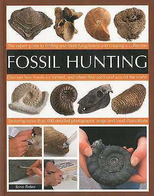 Fossil Hunting: An Expert Guide to Finding, Classifying, Dating and Creating a F