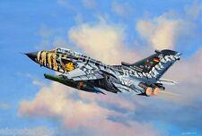 """Tornado ECR """"Tiger Meet 2011"""", Revell Flugzeug Modell Bausatz 1:144, 04846"""