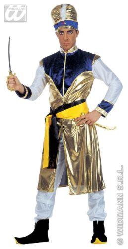 Mens Bollywood Costume Maharajah Costume Sultan Indian Asian Fancy Dress Costume