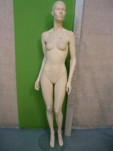 Mannequin Mannequin Doll Fashion Doll Female 3423