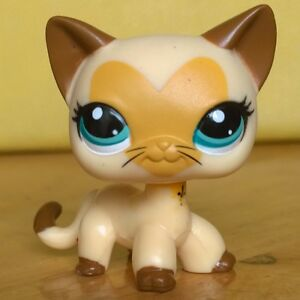Pictures Of Lps Cats And Dogs