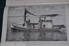 1944 magazine article about SHRIMP, industry info, fishing, Gulf Coast