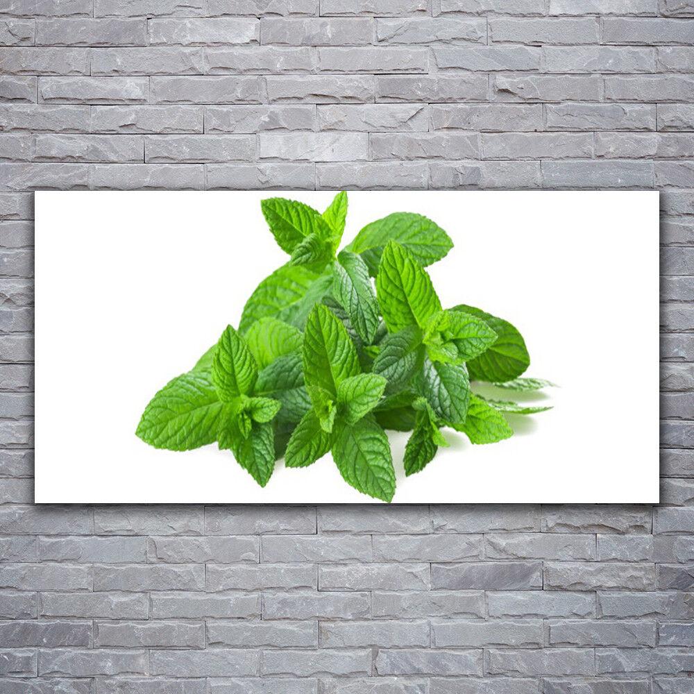 Verre Imprimer Wall Art Image 120x60 Photo Menthe Floral