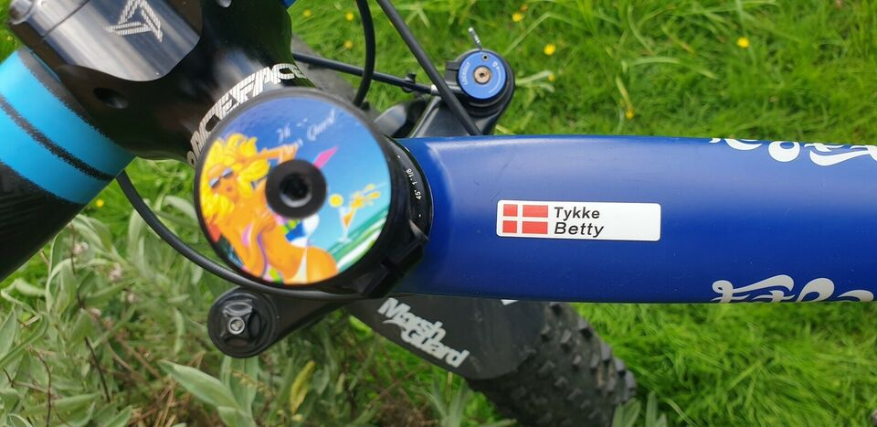 Specialized FatBoy, anden mountainbike, XL tommer