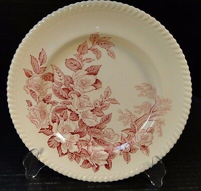 "Johnson Brothers Windsor Ware Apple Blossom Pink Dinner Plate 10"" EXCELLENT"