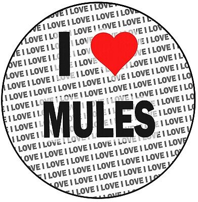 """Birthday Events Strengthening Sinews And Bones I Love Mules 8"""" 20cm Circle Icing Cake Topper Decoration"""