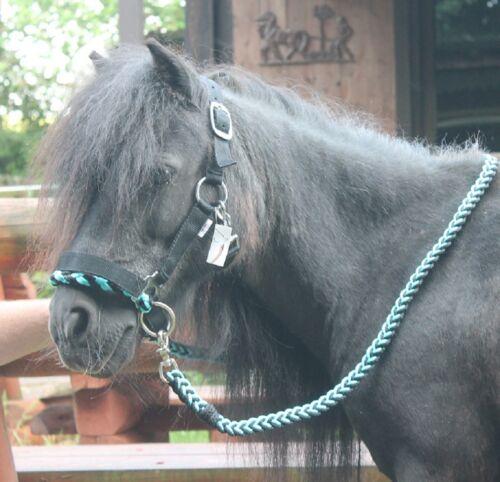 SHETTY PONY HOLZPFERD Reithalfter gebißlose TRENSE ZÜGEL Sidepull Shetland Pony