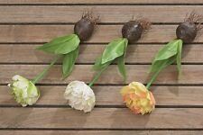 """Kunstblume """"Tulpe mit Blumenzwiebel"""" im 3 er Set, Dekoration, Kunstpflanze"""