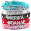 Bling-Cuir-Personnalise-Strass-Lettre-Nom-charme-Pet-Cat-Dog-Collar-S-M-L miniature 10