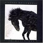 16 Horsepower - Live March 2001 (Live Recording, 2008)