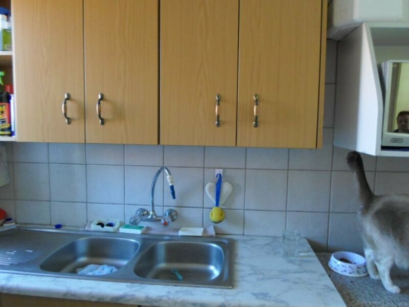 Townhouse  for Rent in Polokwane Central - 3  bedroom XO - DIO04TF2