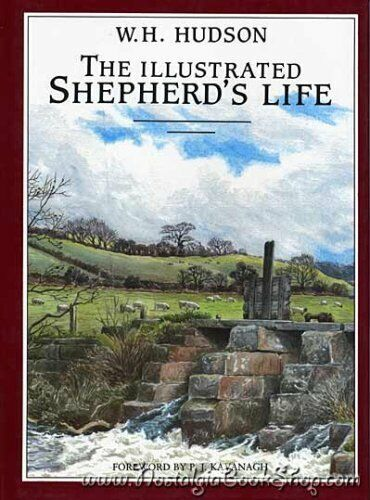 The Illustrated Shepherd's Life By Hudson
