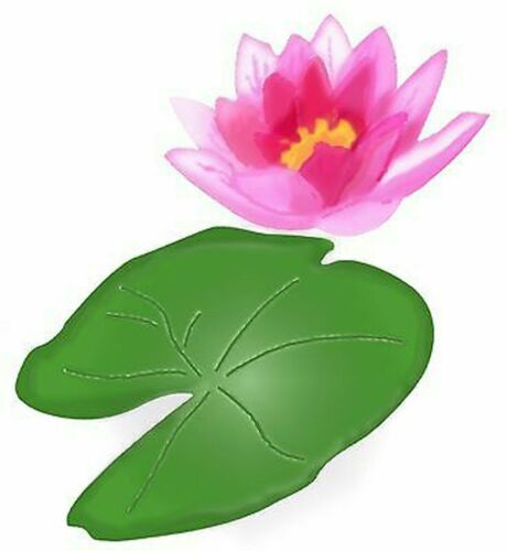 Sizzix Bigz Water Lily Flower /& Pad die #A10728 Retail $19.99 Cuts fabric!