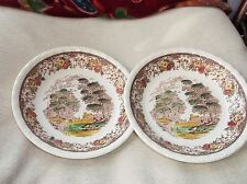 PAIR OF VINTAGE GOOD SIZE SOUP CEREAL BOWLS ROYAL TUDOR OLDE ENGLAND HAND TINTED