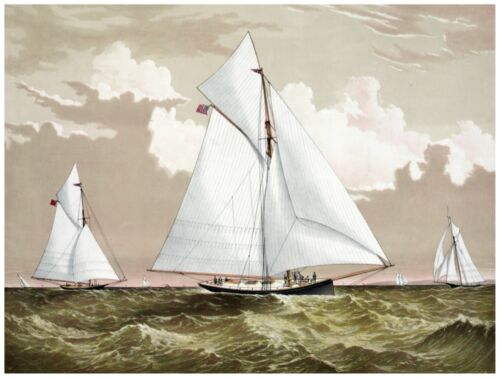 8979.Three sail boats together in tranquil ocean.POSTER.decor Home Office art