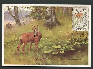 Earnest Cssr Mk 1963 Fauna Wild Hirsch Reh Deer Maximumkarte Maximum Card Mc Cm D4791 Latest Fashion Specialty Philately