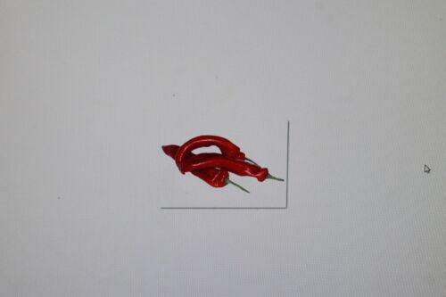 #264 2 x 10 semi rossa ungherese a punta Paprika Capsicum Annuum
