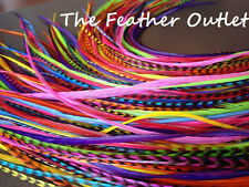Lot 16 Grizzly Solid Feathers Hair Extensions saddle Colors Bright Real RAINBOW