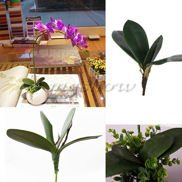 Artificial Green Rose Leaves/Butterfly Orchid Silk Leaf Beauty Plant Decor New