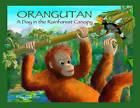 Orangutan: A Day in the Rainforest Canopy by Rita Goldner (Hardback, 2016)
