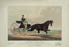 "1869 HORSE RACING, 20""x16"" Art Print, Prospect Park Brooklyn, Wagon, antique"
