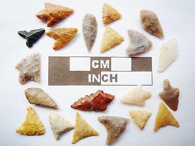 Miniature Neolithic Arrowheads x 20 - 4000BC - (R026)