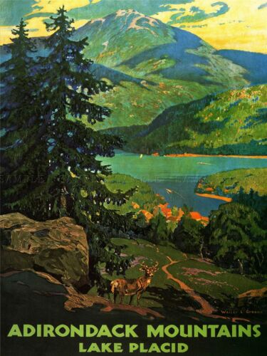 TRAVEL TOURISM ADIRONDACK MOUNTAINS LAKE PLACID USA TREE ART POSTER PRINT LV7472