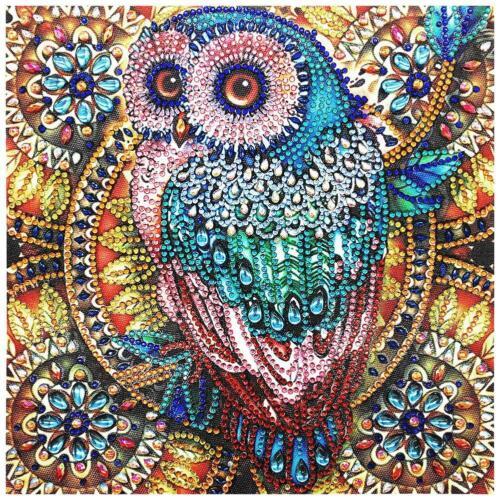 5D hágalo usted mismo especial en forma de diamante Pintura Pájaro mosaico kits de artesanía punto de cruz H1