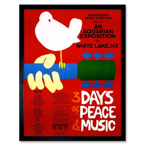 Music Festival Concert Woodstock Ny Peace Dove Love Legend 12X16 Framed Print