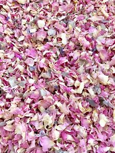 Pink-Grey-Rose-Petals-Natural-Biodegradable-Wedding-Confetti-Dried-Flowers