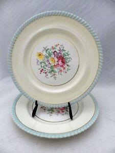 Johnson-Bros-Windsor-Ware-set-lot-of-2-vintage-Dinner-plates-10-034-VGC
