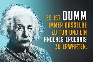 Albert Einstein Collage Saying 59 Tin Sign Shield 20 X 30 CM R0843